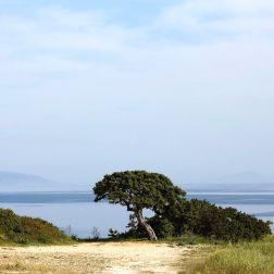 Ile de Paros