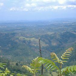 Autre vue de la réserve