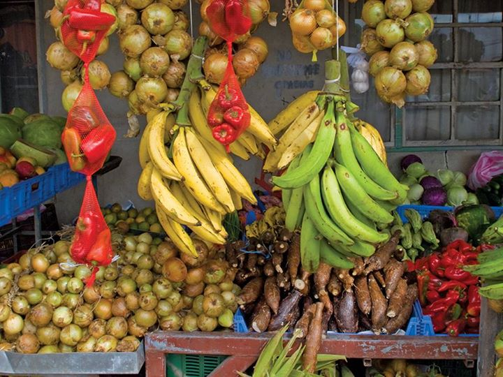 Marché-banane-Costa-Rica