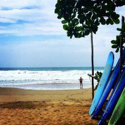 Activités-surf