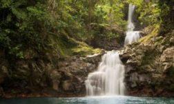 nature fidji