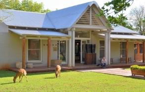 Morukuru Farm House - Nyala feeding on the lawn